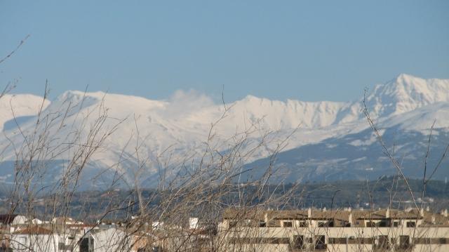 Op de terugweg reden we zeker 100 km met naast ons de besneeuwde toppen van de Sierra Nevada. Deze keten loopt van Granada tot Almeria.